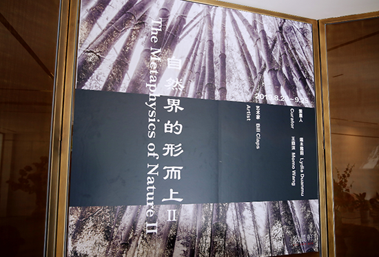 《自然界的形而上II》——Bill Claps个展北京启幕